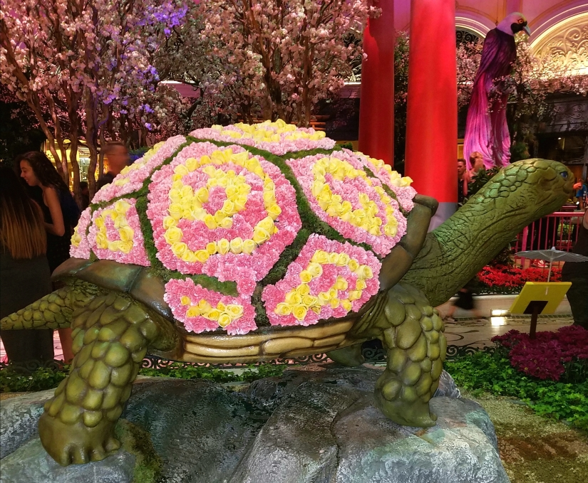 Bellagio Turtle